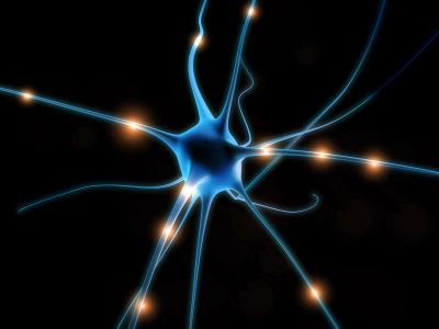 neuron-09