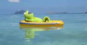 Kermit-Fiji