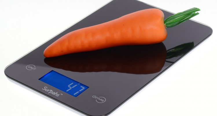 keep track of food intake without being obsessive