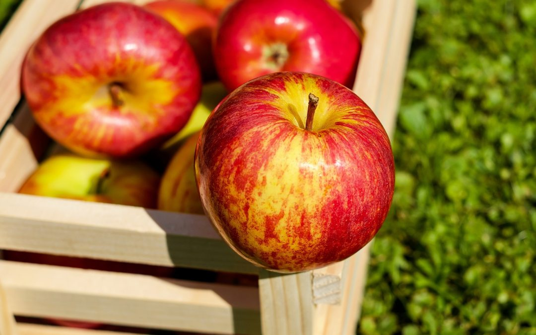 3 Reasons to Try Apple Cider Vinegar